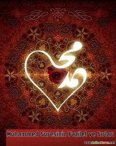 Muhammed Suresi'nin Fazilet ve Sırları